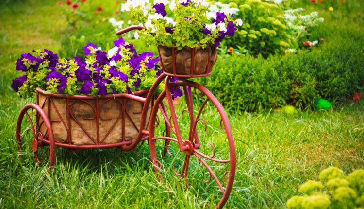 a photo of flower in a recycled bike