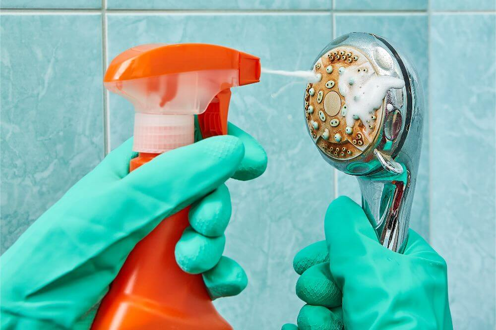 DIY Shower Cleaners