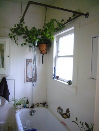 Hanging Plants In A Small Half Bath Provides Life And Color To The Space.