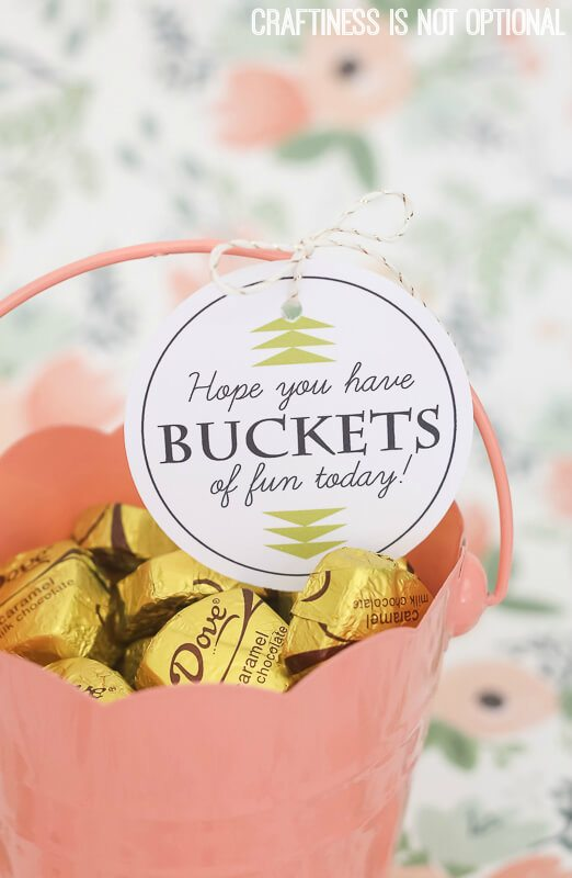 gold Dove caramel chocolate candy pink bucket