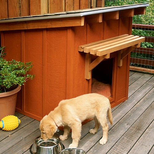 Furry friend has a beautiful mini ranch house for a home.