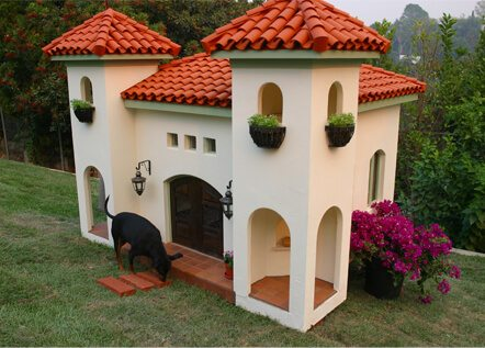 How to Build a Remarkable DIY Dog House (21 Free Dog House Plans)