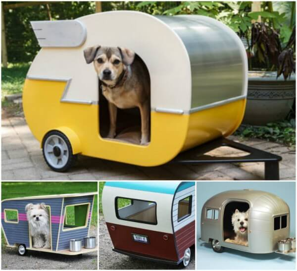 Doghouse puppy camper.